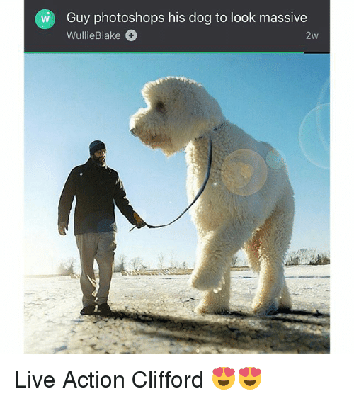 clifford: Guy photoshops his dog to look massive  WullieBlake  2w Live Action Clifford 😍😍