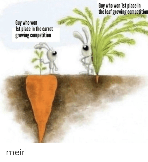 carrot: Guy who won 1st place in  the leaf growing competition  Guy who won  Ist place in the carrot  growing competition meirl