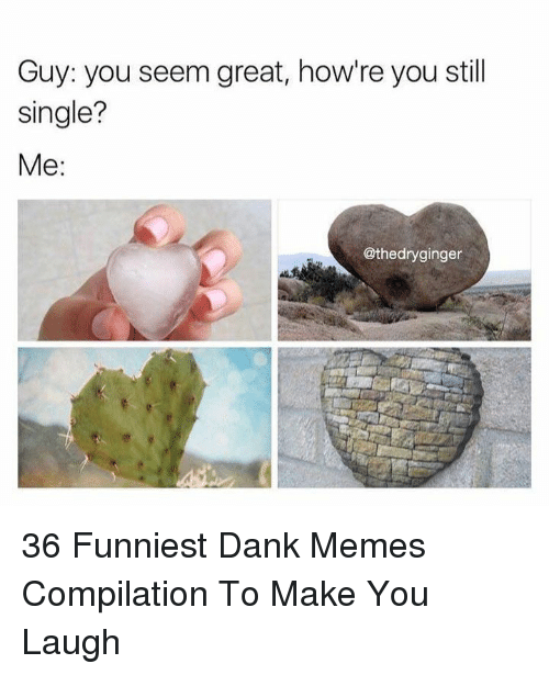 Memes Compilation: Guy: you seem great, how're you still  single?  Me:  @thedryginger 36 Funniest Dank Memes Compilation To Make You Laugh