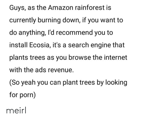 Amazon, Internet, and Yeah: Guys, as the Amazon rainforest is  currently burning down, if you want to  do anything, I'd recommend you to  install Ecosia, it's a search engine that  plants trees as you browse the internet  with the ads revenue.  (So yeah you can plant trees by looking  for porn) meirl