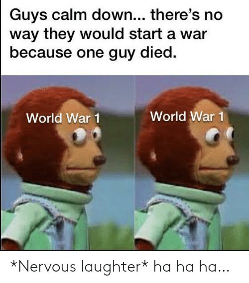world war 1: Guys calm down... there's no  way they would start a war  because one guy died.  World War 1  World War 1 *Nervous laughter* ha ha ha…