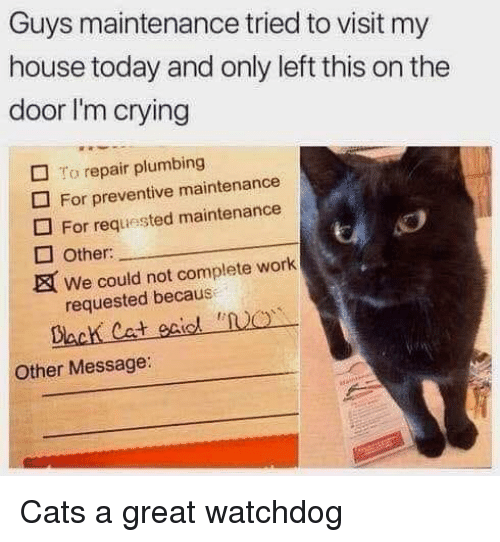 Becaus: Guys maintenance tried to visit my  house today and only left this on the  door I'm crying  □ To repair plumbing  For preventive maintenance  For requested maintenance  Other:  We could not complete work  requested becaus  Dack Cat eiol NO  Other Message Cats a great watchdog