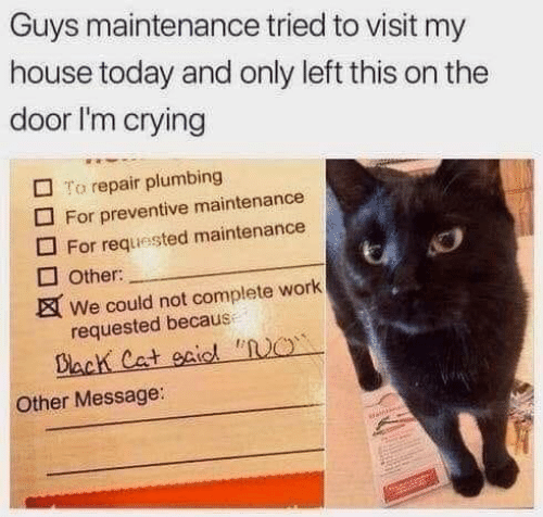 "Crying, My House, and Work: Guys maintenance tried to visit my  house today and only left this on the  door I'm crying  To repair plumbing  For preventive maintenance  For requested maintenance  Other:  We could not complete work  requested because  Dack Cat eaidl ""O  Other Message:  saintns"