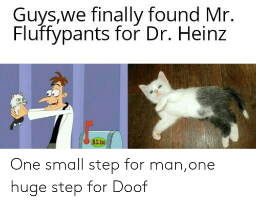 Heinz, Step, and One: Guys,we finally found Mr.  Fluffypants for Dr. Heinz  DE.In One small step for man,one huge step for Doof