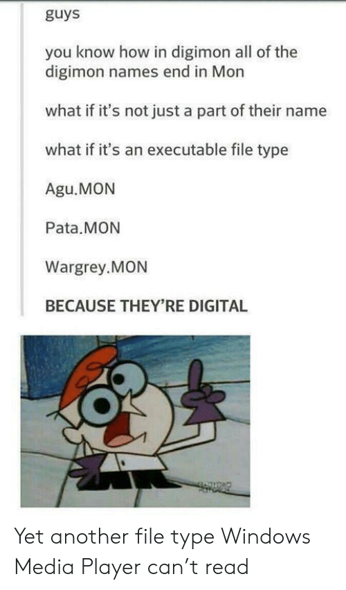 Digimon: guys  you know how in digimon all of the  digimon names end in Mon  what if it's not just a part of their name  what if it's an executable file type  Agu.MON  Pata.MON  Wargrey.MON  BECAUSE THEY'RE DIGITAL Yet another file type Windows Media Player can't read
