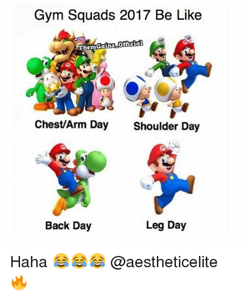 Be Like, Gym, and Leg Day: Gym Squads 2017 Be Like  Thern Gainz-OELGECS  Chest/Arm Day  Shoulder Day  Leg Day  Back Day Haha 😂😂😂 @aestheticelite 🔥