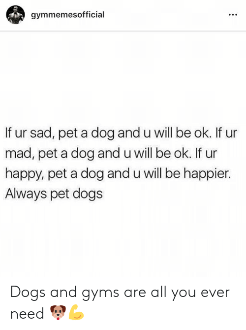 gyms: gymmemesofficial  If ur sad, pet a dog and u will be ok. If ur  mad, pet a dog and u will be ok. If ur  happy, pet a dog and u will be happier.  Always pet dogs Dogs and gyms are all you ever need 🐶💪