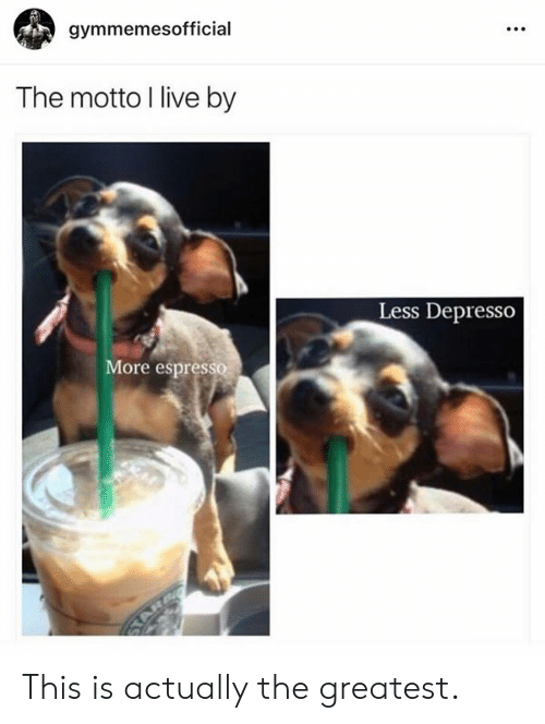 espresso: gymmemesofficial  The motto I live by  Less Depresso  ore espresso This is actually the greatest.