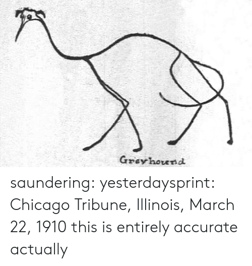 Illinois: Gzey hound saundering: yesterdaysprint:   Chicago Tribune, Illinois, March 22, 1910  this is entirely accurate actually