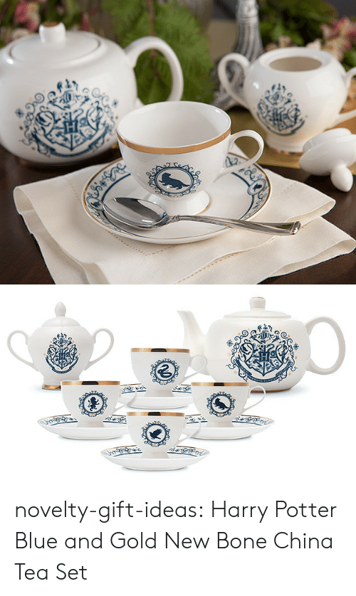 Harry Potter, Tumblr, and China: H  CAL- novelty-gift-ideas:  Harry Potter Blue and Gold New Bone China Tea Set