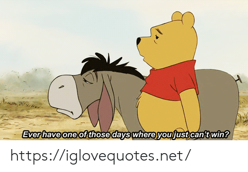 Net, One, and Win: H  Everhave one of those days where youjust can't win? https://iglovequotes.net/