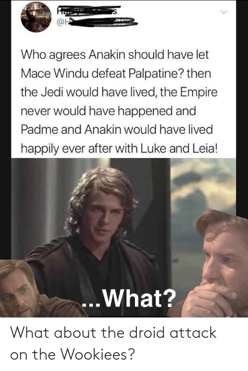 Happily Ever After: @H  Who agrees Anakin should have let  Mace Windu defeat Palpatine? then  the Jedi would have lived, the Empire  never would have happened and  Padme and Anakin would have lived  happily ever after with Luke and Leia!  ...What? What about the droid attack on the Wookiees?