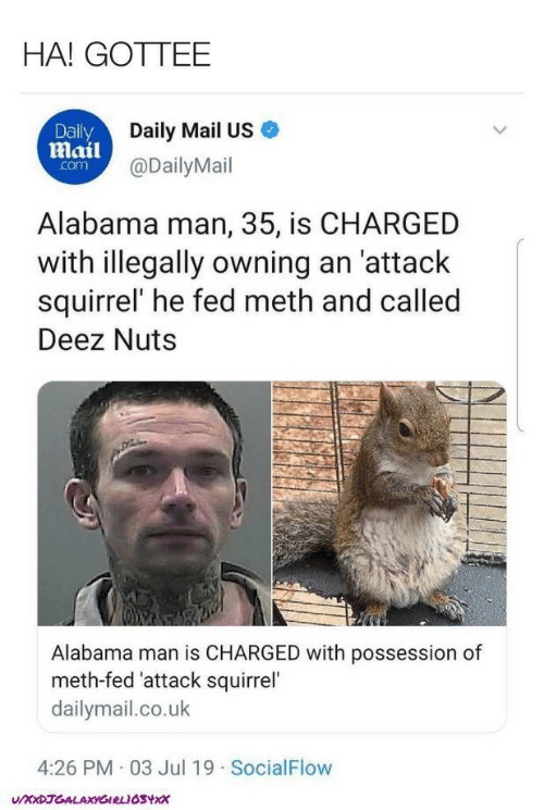 possession: HA! GOTTEE  Daily  Daily Mail US  Mail@DailyMail  com  Alabama man, 35, is CHARGED  with illegally owning an 'attack  squirrel' he fed meth and called  Deez Nuts  Alabama man is CHARGED with possession of  meth-fed 'attack squirrel'  dailymail.co.uk  4:26 PM 03 Jul 19 SocialFlow  UXXDJGALAXYGIRLIOSYX