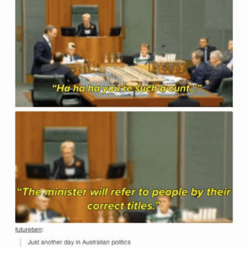 """Ironic, Politics, and Cunt: """"Ha ha ha youkre Such a cunt  The minister will refer to people by their  correct titles.  utureben  Just another day in Australian politics"""