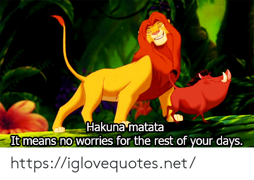 No Worries: Hakuna matata  It means no worries for the rest of your days. https://iglovequotes.net/