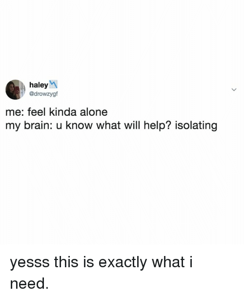 Being Alone, Brain, and Help: haleyM  @drowzygf  me: feel kinda alone  my brain: u know what will help? isolating yesss this is exactly what i need.