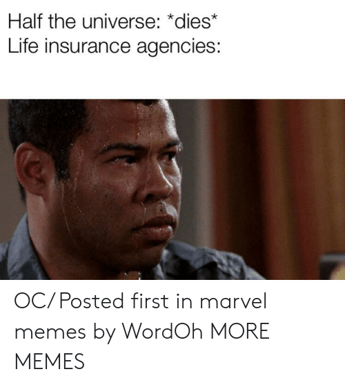 Marvel Memes: Half the universe: *dies*  Life insurance agencies: OC/ Posted first in marvel memes by WordOh MORE MEMES