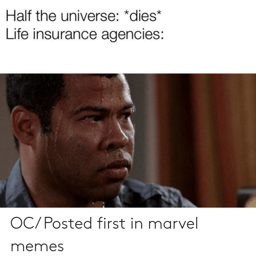 Marvel Memes: Half the universe: *dies*  Life insurance agencies: OC/ Posted first in marvel memes