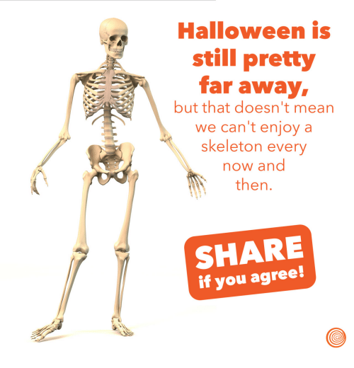 Halloween, Mean, and Now and Then: Halloween is  still pretty  far away  but that doesn't mean  we can't enjoy a  skeleton every  now and  then.  SHARE  if you agree
