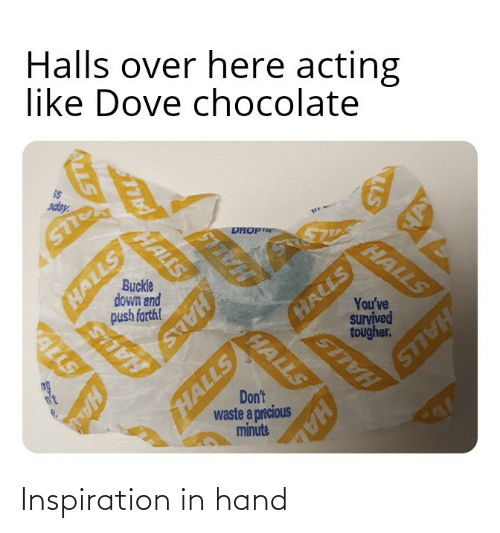 saas: Halls over here acting  like Dove chocolate  is  oday  HALLS  HALLS  DROPTM  HALLS  You've  survived  STT  Buckle  down and  push farthl  HALLS  tougher.  SAAS  HALLS  ALLS  Don't  waste a precious  minute  ng  n't  HAL  HALLS  HAL  ALLS Inspiration in hand