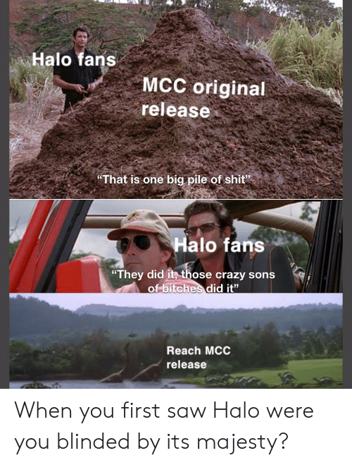 "Crazy, Halo, and Saw: Halo fans  MCC original  release  That is one big pile of shit""  Halo fans  ""They did it those crazy sons  of bitches did it""  Reach MCC  release When you first saw Halo were you blinded by its majesty?"