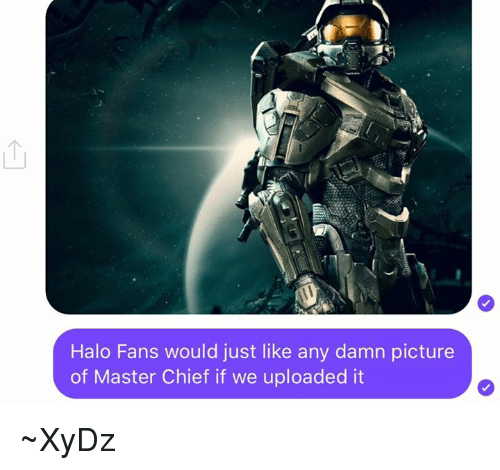 master chief: Halo Fans would just like any damn picture  of Master Chief if we uploaded it ~XyDz