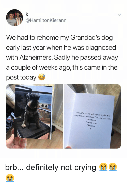 Crying, Dad, and Definitely: @HamiltonKierann  We had to rehome my Grandad's dog  early last year when he was diagnosed  with Alzheimers. Sadly he passed away  a couple of weeks ago, this came in the  post today  Hello, I'm on my holidays in Spain. I'nm  sorry to hear about my Dad. He was very  kind to me  Lots of Love  Winston brb... definitely not crying 😭😭😭