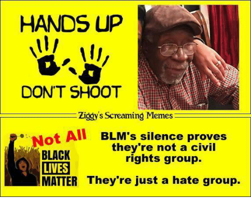 hate group: HANDS UP  DON'T SHOOT  Ziggy's Screaming Memes  Not All BLM's silence proves  they're not a civil  BLACK  rights group.  LIVES  MATTER They're just a hate group.