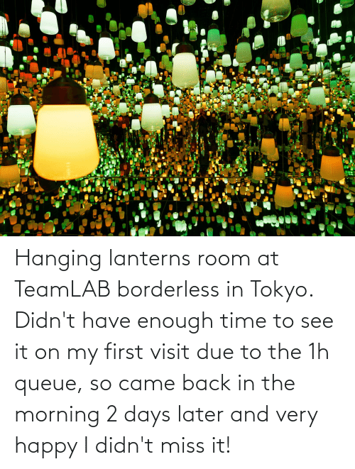 Borderless: Hanging lanterns room at TeamLAB borderless in Tokyo. Didn't have enough time to see it on my first visit due to the 1h queue, so came back in the morning 2 days later and very happy I didn't miss it!