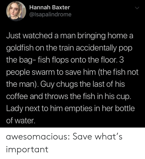 Goldfish, Pop, and Tumblr: Hannah Baxter  @lsapalindrome  Just watched a man bringing home a  goldfish on the train accidentally pop  the bag- fish flops onto the floor. 3  people swarm to save him (the fish not  the man). Guy chugs the last of his  coffee and throws the fish in his cup.  Lady next to him empties in her bottle  of water. awesomacious:  Save what's important