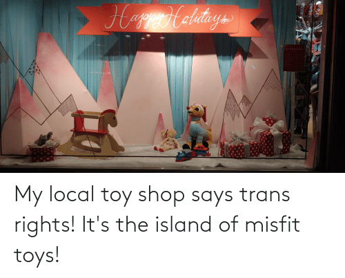 Friday, Toys, and Wednesday: HappHalitays  ALAKAZAM  TOYS  MONDAY  7pmm  100m  TUESDAY  WEDNESDAY  10am  Fom  THURSDAY  10um  1000- Rpm  FRIDAY  SATURDAY  Mamo Apm-  SUNDAY  100m My local toy shop says trans rights! It's the island of misfit toys!