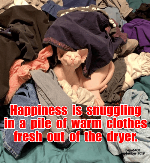 Happiness Is: Happiness is snuggling  in a pile of warm clothes  fresh out of the dryer  bajio6401  eptember 2019