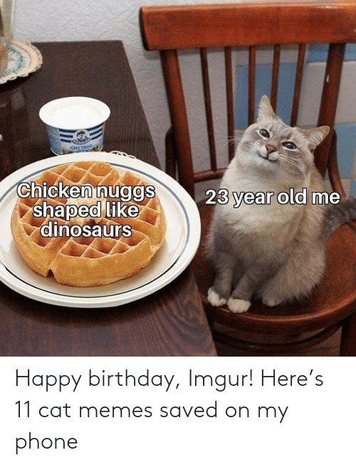 saved: Happy birthday, Imgur! Here's 11 cat memes saved on my phone