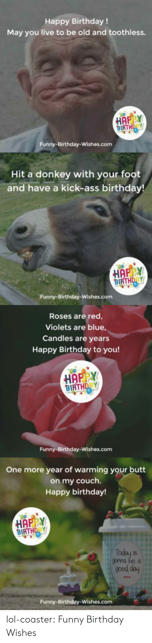 funny birthday: Happy Birthday !  May you live to be old and toothless.  BIRTHDAY  Funny-Birthday-Wishes.com   Hit a donkey with your foot  and have a kick-ass birthday!  HAPY  BIRTHDAY  Funny-Birthday-Wishes.com   Roses are red  Violets are blue,  Candles are years  Happy Birthday to you!  HAPPY  BIRTHDRY  Funny-Birthday-Wishes.com   One more year of warming your butt  on my couch.  Happy birthday!  BIRTHDAY  goyna be a  good day  Funny-Birthday-Wishes.com lol-coaster:  Funny Birthday Wishes