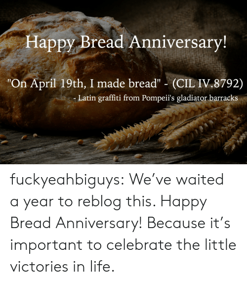 "Gladiator: Happy Bread Anniversary  ""On April 19th, I made bread"" (CIL IV.8792)  Latin graffiti from Pompeii's gladiator barracks fuckyeahbiguys:  We've waited a year to reblog this. Happy Bread Anniversary! Because it's important to celebrate the little victories in life."