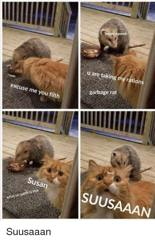 Happy, Garbage, and Rat: happy squeek  u are taking my rations  om  nom  garbage rat  excuse me you filth  Susan  SUUSAAAN Suusaaan