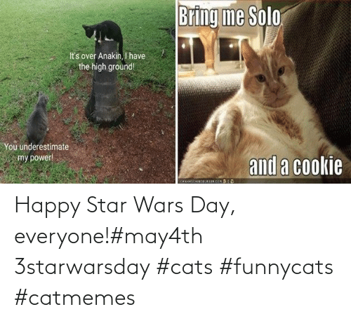Star: Happy Star Wars Day, everyone!#may4th 3starwarsday #cats #funnycats #catmemes