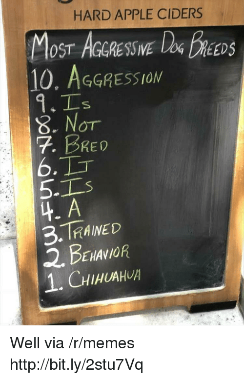 Aggression: HARD APPLE CIDERS  OST AGGRESSIVE  10, AGGRESSION  DEEDS  8. Nor  7. BRED  6.  5-1  4. A  3.TRAINED  2. BENANOR  1.CHIHUAH Well via /r/memes http://bit.ly/2stu7Vq