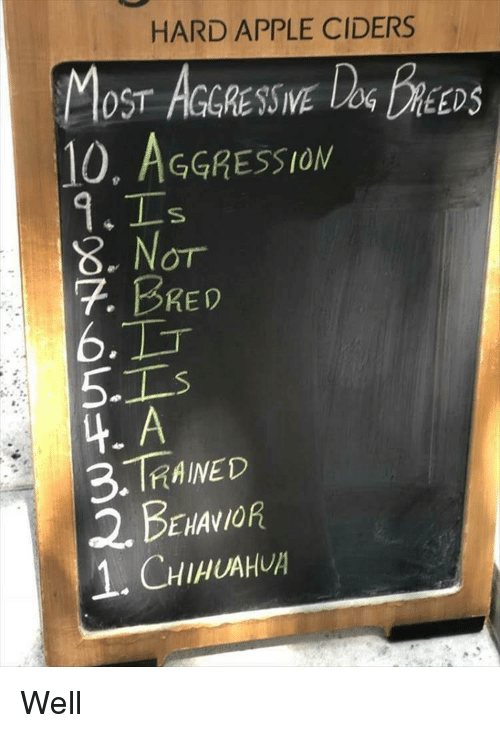 Aggression: HARD APPLE CIDERS  OST AGGRESSIVE  10, AGGRESSION  DEEDS  8. Nor  7. BRED  6.  5-1  4. A  3.TRAINED  2. BENANOR  1.CHIHUAH Well