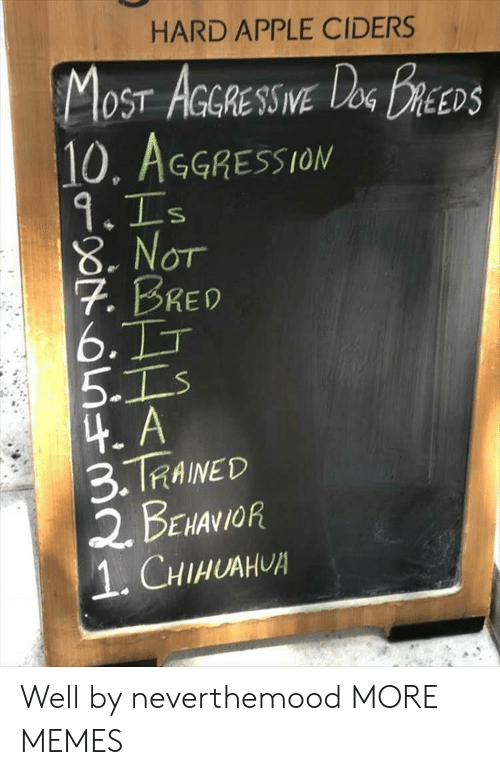 Aggression: HARD APPLE CIDERS  OST AGGRESSIVE  10, AGGRESSION  DEEDS  8. Nor  7. BRED  6.  5-1  4. A  3.TRAINED  2. BENANOR  1.CHIHUAH Well by neverthemood MORE MEMES