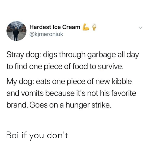 Goes On: Hardest Ice Cream  @kjmeroniuk  Stray dog: digs through garbage all day  to find one piece of food to survive.  My dog: eats one piece of new kibble  and vomits because it's not his favorite  brand. Goes on a hunger strike. Boi if you don't