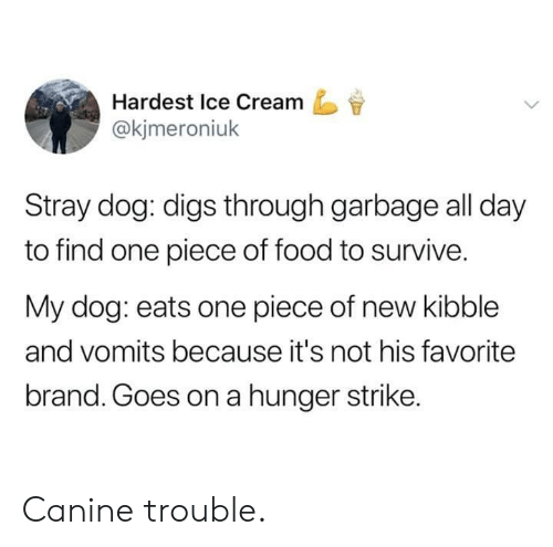 Goes On: Hardest Ice Cream  @kjmeroniuk  Stray dog: digs through garbage all day  to find one piece of food to survive.  My dog: eats one piece of new kibble  and vomits because it's not his favorite  brand. Goes on a hunger strike. Canine trouble.