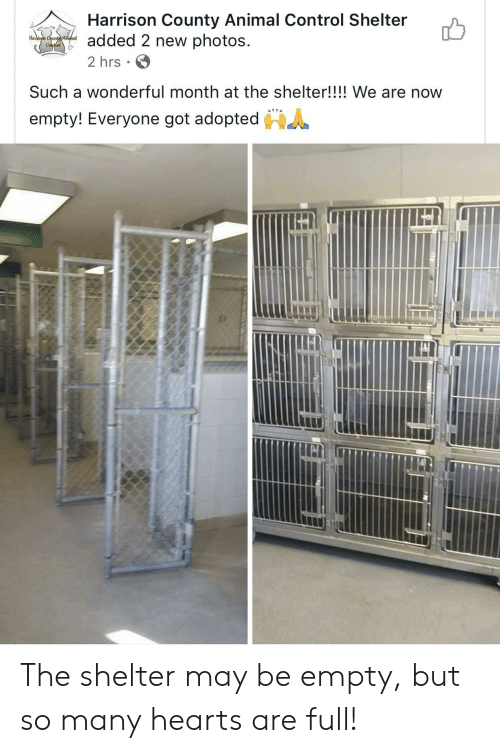 Control, Animal, and Hearts: Harrison County Animal Control Shelter  added 2 new photos  Haison Ceunttninal  Conthel  2 hrs  Such a wonderful month at the shelter!!!! We are now  empty! Everyone got adopted The shelter may be empty, but so many hearts are full!