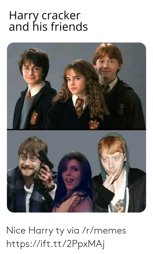 Friends, Memes, and Nice: Harry cracker  and his friends Nice Harry ty via /r/memes https://ift.tt/2PpxMAj