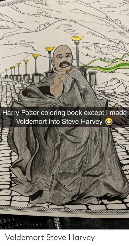 Harry Potter, Steve Harvey, and Book: Harry Potter coloring book except I made  Voldemort into Steve Harvey Voldemort Steve Harvey
