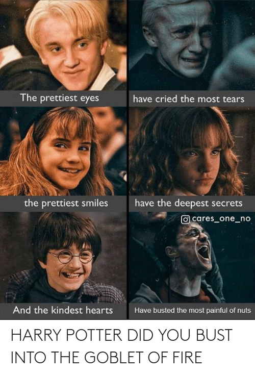 Harry Potter: HARRY POTTER DID YOU BUST INTO THE GOBLET OF FIRE