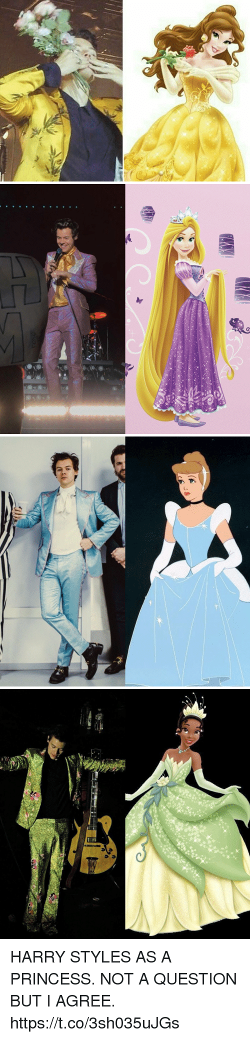 Harry Styles: HARRY STYLES AS A PRINCESS. NOT A QUESTION BUT I AGREE. https://t.co/3sh035uJGs