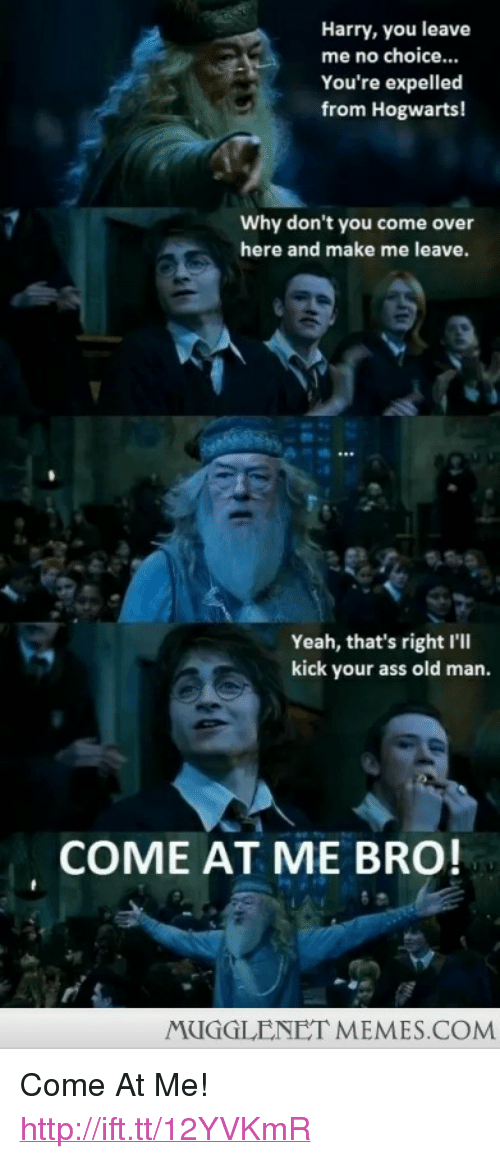 """Ass, Come Over, and Memes: Harry, you leave  me no choice...  You're expelled  from Hogwarts!  Why don't you come over  here and make me leave.  Yeah, that's right I'll  kick your ass old man.  COME AT ME BRO  MUGGLENET MEMES.COM <p>Come At Me! <a href=""""http://ift.tt/12YVKmR"""">http://ift.tt/12YVKmR</a></p>"""