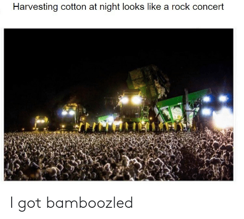 Got, Rock, and Cotton: Harvesting cotton at night lookss like a rock concert I got bamboozled