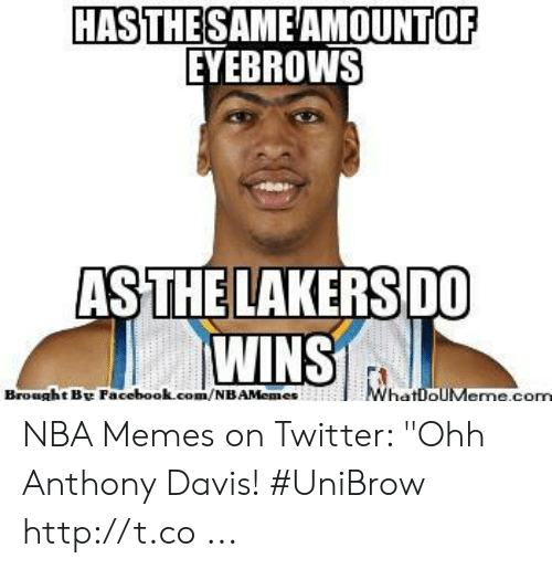 "Davis Unibrow: HASTHESAMEAMOUNTOF  EYEBROWS  THELAKERS  AS  DO  WINS  Brought B Facebook.com/NBAMemes NBA Memes on Twitter: ""Ohh Anthony Davis! #UniBrow http://t.co ..."